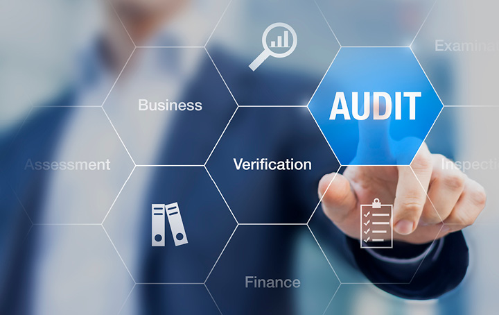 Image of Audit